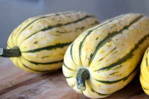 Delicata squash. Fancy name, fancy taste.