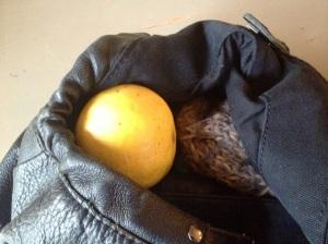 A grapefruit.