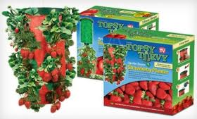 Remember the Topsy Turvy things? I had a strawberry one that fell to its death and then got eaten by some sort of rodent thing. grr.